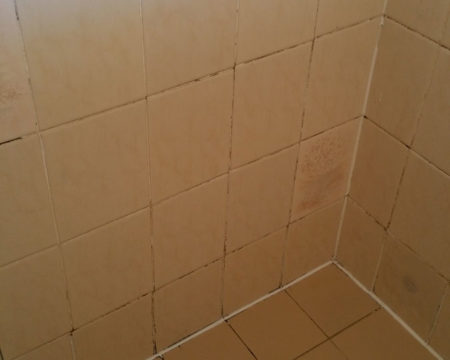 Tiling And Re Grouts Brisbane Tile And Grout Cleaning Sapphire Floor Care